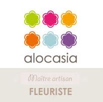 visuel creation logo identite visuelle fleuriste maitre artisan
