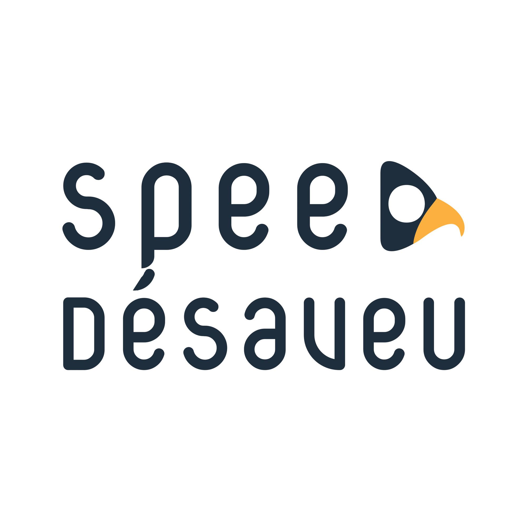 image du logo SEO Speed Desaveu
